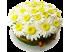 Торт Букет ромашек № 579