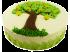 Торт Древо жизни № 336